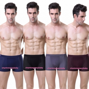 Sexy Bamboo Fiber Breathable Mesh Men's Underwear Boxers Briefs Lingerie (4 Colors) LY3828