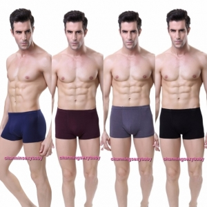 Sexy Bamboo Fiber Breathable Men's Underwear Briefs Boxers Lingerie (4 Colors) LY0062