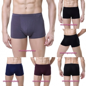 Sexy Bamboo Fiber Breathable Men's Underwear Briefs Boxers (4 Colors) LY0062